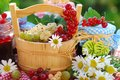 Summer fruits and preserves in the garden Royalty Free Stock Photo