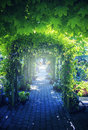 Summer garden arch seasonal image of Stock Photography