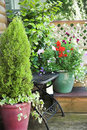 Summer garden flowers and pots Royalty Free Stock Images