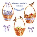 Summer garden`s set with decorative wicker baskets with flowers, sparrows and berries