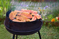 Summer grilling in garden Royalty Free Stock Photo