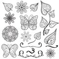 Summer hand drawn elements set lacy with butterflies flowers leaves Royalty Free Stock Images