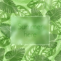 The summer here lettering in a frame on the background of fresh tropic green leaves poster. Modern Exotic banner.