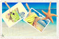 Summer holiday items against a postcard beach scene with vintage feel Royalty Free Stock Photography