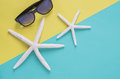 Summer holiday minimal background concept. Sunglasses, starfishe Royalty Free Stock Photo