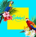 Summer holidays background with tropical flowers with colorful tropical parrots. Lettering Hello summer Template Vector