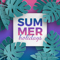 Summer holidays banner with paper cut frame and tropical plants on pink blue gradient background, floral design for banner, flyer Royalty Free Stock Photo