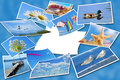 Summer holidays photos collection on blue with one blank card background Royalty Free Stock Photos
