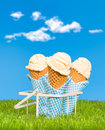 Summer Ice Creams Royalty Free Stock Photos
