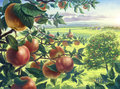 Summer landscape with apples Royalty Free Stock Image