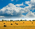 Summer landscape with bales Stock Photo