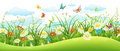 Summer landscape banner Royalty Free Stock Photo