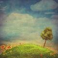 Summer Landscape With Butterfl...