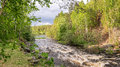 Summer landscape fast of the Ural river with the trees on the Bank of Russia, June Royalty Free Stock Photo