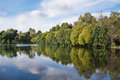 Summer landscape with a forest lake Royalty Free Stock Photo
