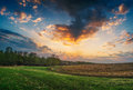 Summer landscape with green grass, road Royalty Free Stock Photo