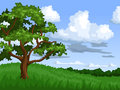 Summer landscape illustration of with oak tree Stock Image