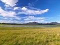 Summer landscape lake Stock Image