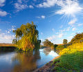 Summer landscape on the river beautiful Stock Images
