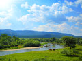 Summer landscape with river mountains and horses Royalty Free Stock Photo
