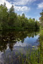 Summer landscape with river in the north of the republic of karelia russia Royalty Free Stock Photos