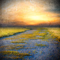 Summer landscape with a rural road and susnset Royalty Free Stock Photos