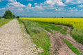 Summer landscape with stone road in leading to small village Royalty Free Stock Photo