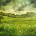 Summer landscape with vintage colors color filters Royalty Free Stock Photo