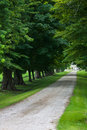 Summer laneway long gravel lane way disappears into the lush green trees in southwestern ontario Royalty Free Stock Images