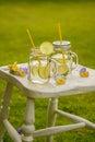 Summer Lemonade Royalty Free Stock Photo