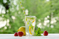 Summer lemonade . Lemon and mint, strawberry Royalty Free Stock Photo