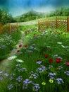 Summer meadow 2
