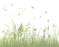 Summer meadow background eps vector illustration with transparency and meshes Royalty Free Stock Images