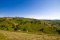 Summer meadow in the carpathians ukrainian Stock Photo