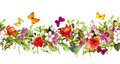 Summer meadow flowers and butterflies. Repeating frame. Watercolor Royalty Free Stock Photo