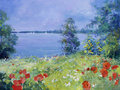 Summer meadow oil paints acrylics Royalty Free Stock Images