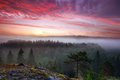 Summer morning dawn early in foggy forest valley in nuuksio national park finland Stock Images