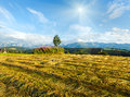 Summer mountain evening country view with mown field and lonely tree and tatra range behind gliczarow gorny poland Royalty Free Stock Photos