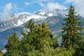 Summer mountain landscape alps switzerland with snow on mount top Royalty Free Stock Photo