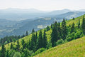 Summer mountain landscape in july Royalty Free Stock Image