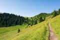Letní horský hřeben