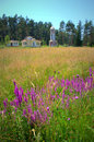 Summer Mountan Meadow Church B...