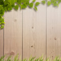 Summer natural backgrounds for your design Royalty Free Stock Photos