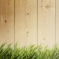 Summer natural backgrounds for your design Stock Image