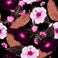 Summer night in forest seamless vector floral pattern, Black bac