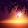https---www.dreamstime.com-stock-photo-summer-night-palm-trees-night-vector-illustration-eps-image55722851