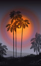 Summer Night. Palm trees  in the night. Vector