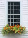 Summer: orange flower window box Royalty Free Stock Photo