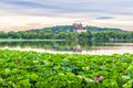 Summer palace the with lotus flower under the sunset in beijing Stock Photos