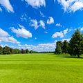 Summer park lawn landscape with green and blue sky Stock Image